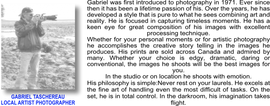 gaby board