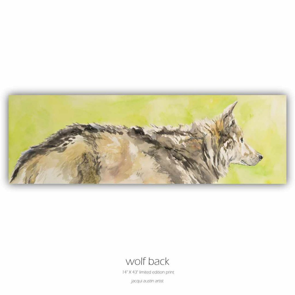 wolf back